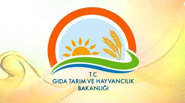 Gıda Tarım ve Hayvancılık Bakanlığı Sözleşmeli Personel Alacak