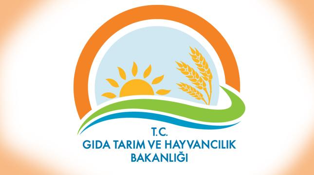 Gıda Tarım ve Hayvancılık Bakanlığı Sözleşmeli Bilişim Personeli Alacak